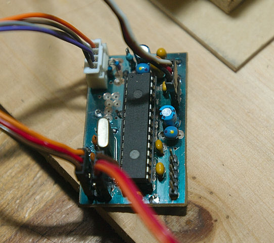 DSC_6505.jpg